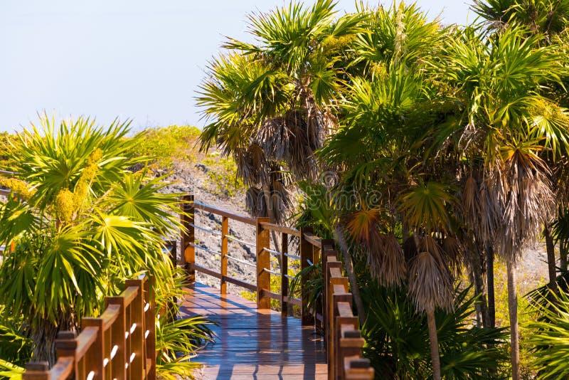 对缓慢地Cayo海岛的沙滩Playa天堂的桥梁,古巴 特写镜头 免版税库存图片