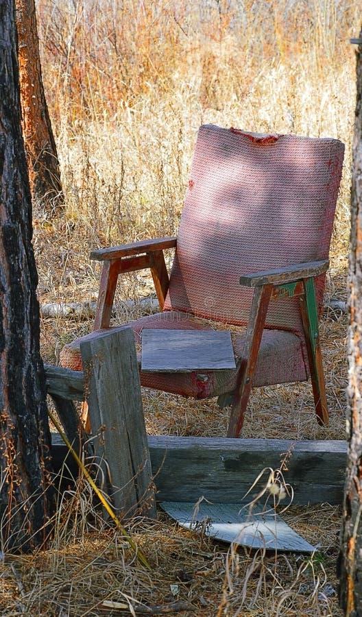 对老被放弃的事的新的生活 椅子在森林在露天下 免版税库存照片