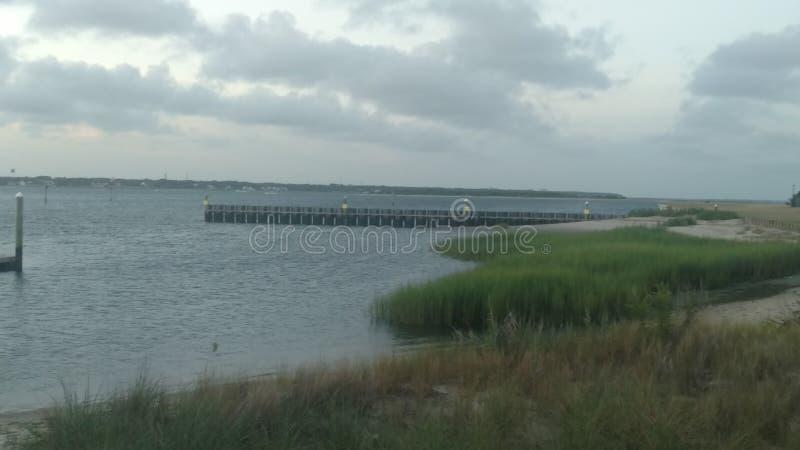 对船坞的象草的步行 免版税库存照片