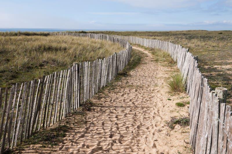 对走道的海滩 图库摄影