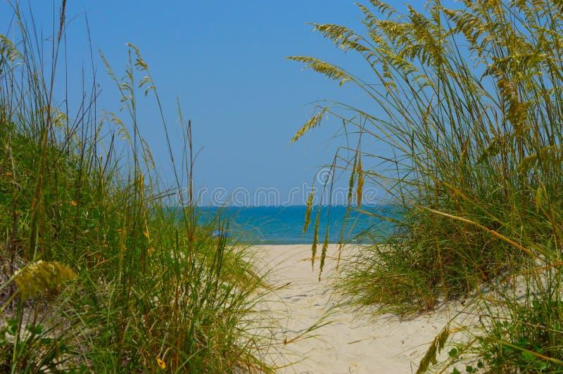 对走道的海滩 免版税图库摄影