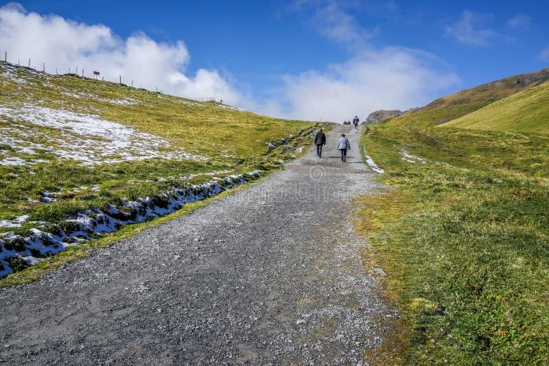 对阿尔卑斯山的石步行方式与步行的人,绿草a 库存图片