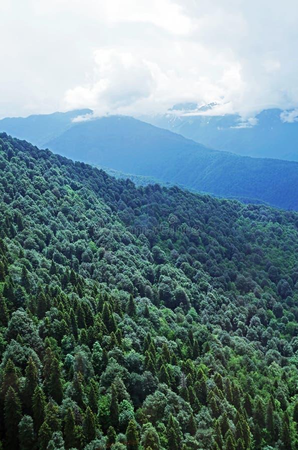 对高白种人山的看法在滑雪胜地罗莎Khutor附近 免版税库存照片