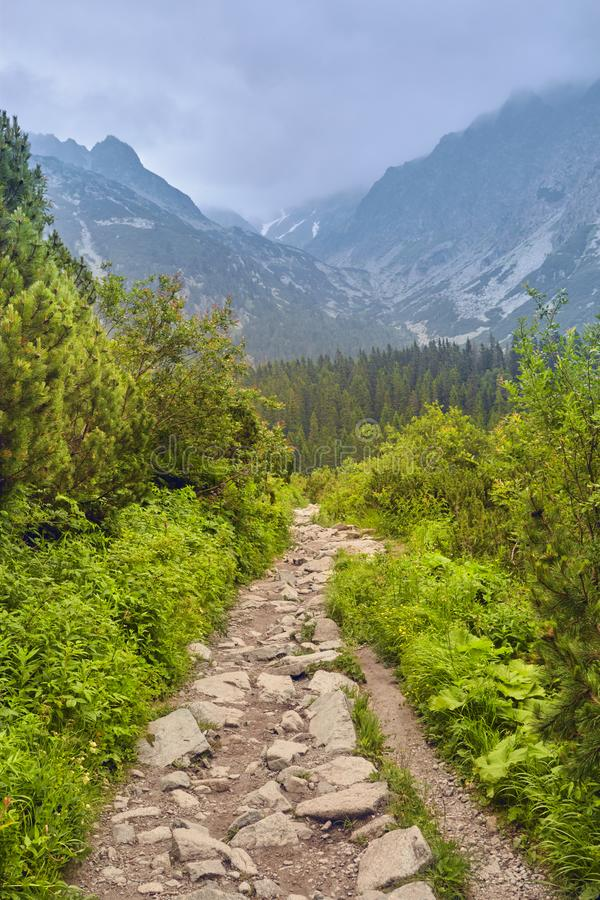 对高Tatras的步行,斯洛伐克 欧洲 库存图片