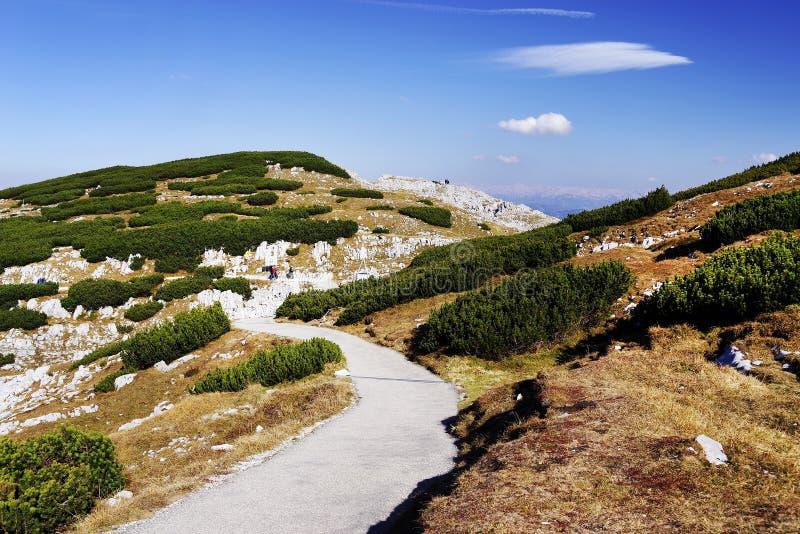 对5个手指平台的供徒步旅行的小道-在阿尔卑斯叫'多数壮观的观看的平台' 图库摄影