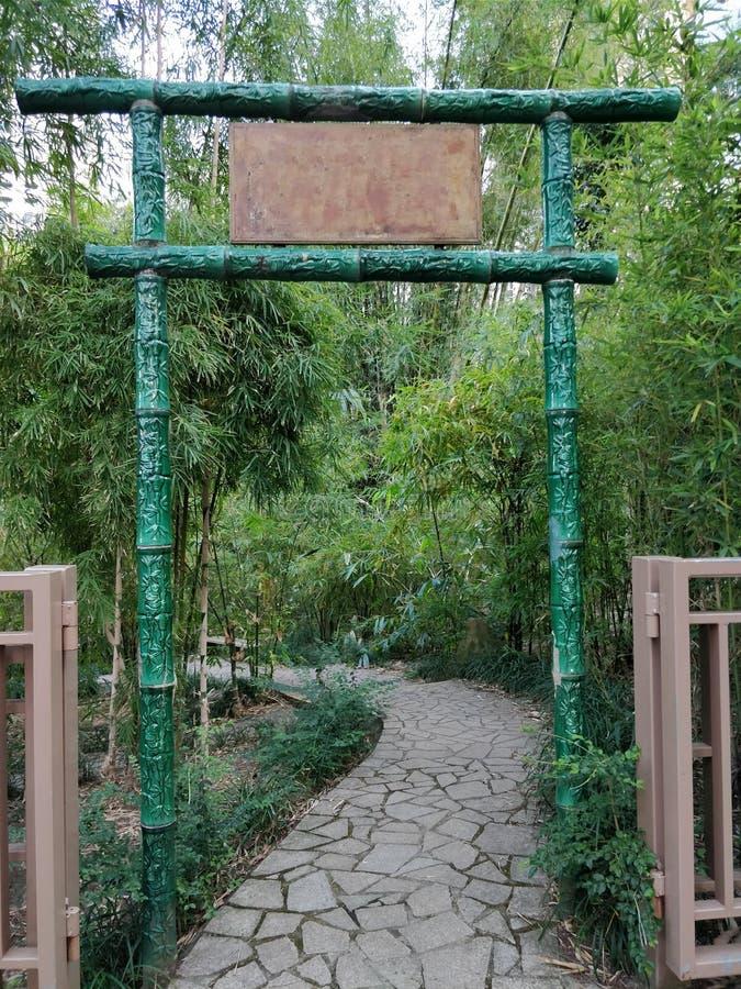 对bambo森林的竹门入口在有拷贝空间的香港 免版税库存照片