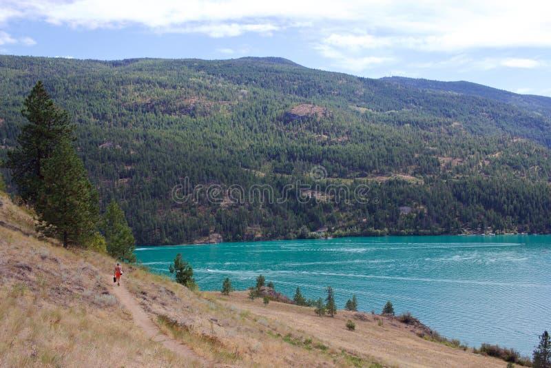 对Cosens海湾, Kalamalka湖省公园,弗农,加拿大的足迹 免版税库存图片