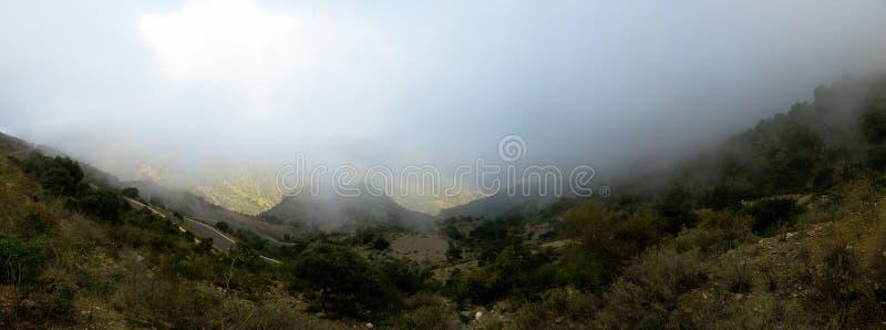 对Filfil雨林的空中全景在厄立特里亚 库存图片