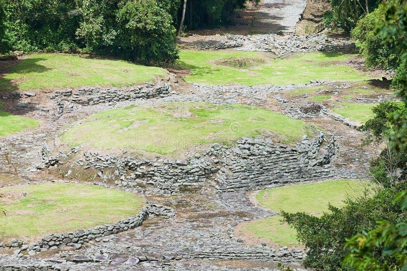 对Guayabo de Turrialba,哥斯达黎加神奇废墟的看法  免版税库存图片