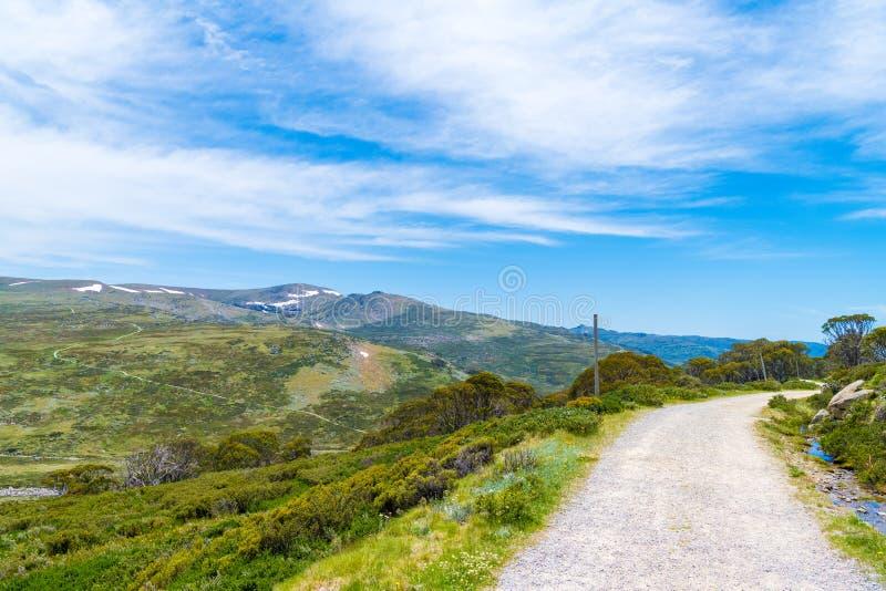 对Kosciuszko峰顶的走的轨道,在可西欧斯可国家公园,NSW,澳大利亚 库存图片
