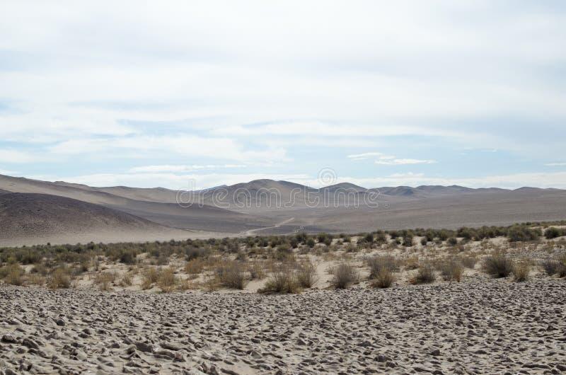 对na沙漠、山、草和盐—秀丽的看法  库存图片