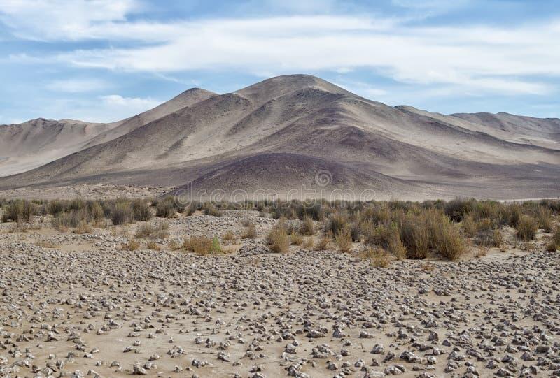 对na沙漠、山、草和盐—秀丽的看法  库存照片