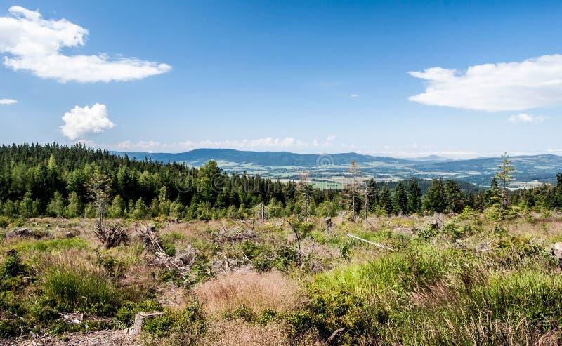 对Orlicke hory山脉的看法从供徒步旅行的小道轰鸣声在Kralicky Sneznik山的Klepy小山在捷克共和国 图库摄影