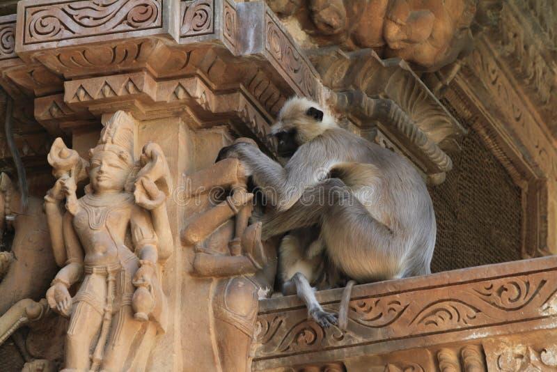 寺庙城市克久拉霍在印度 库存照片