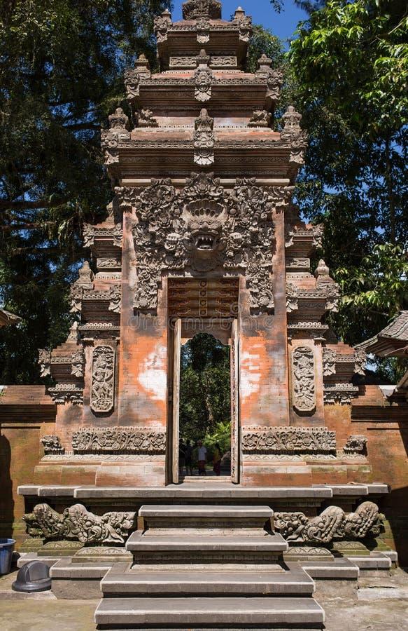 寺庙门 与巨型根的奇怪的树在密林中 免版税库存图片