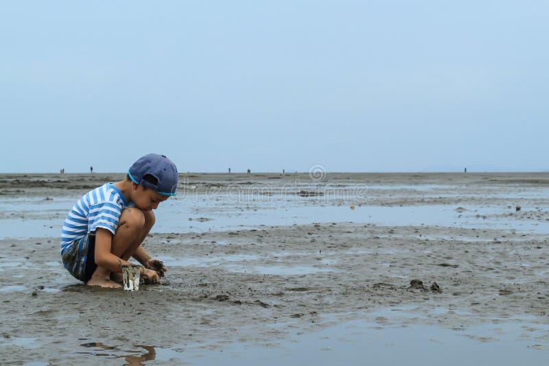 寻找在海底泥的男孩蜗牛壳 免版税库存图片