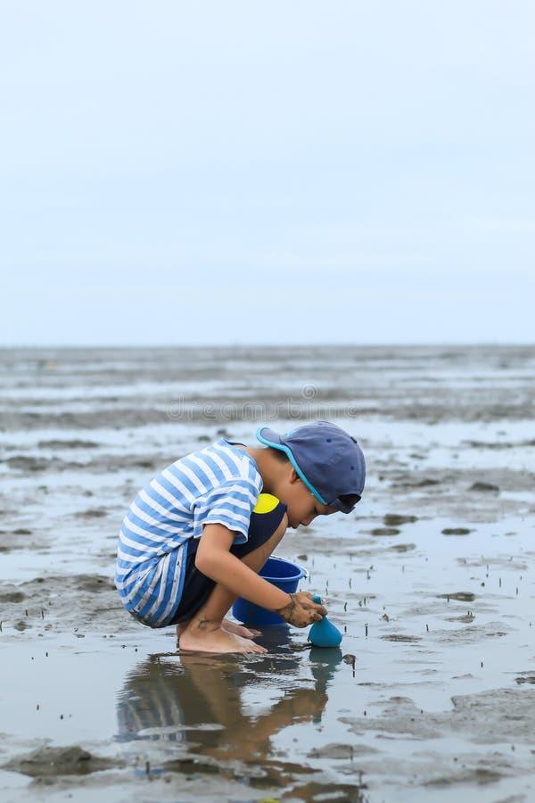 寻找在海底泥的男孩蜗牛壳 图库摄影