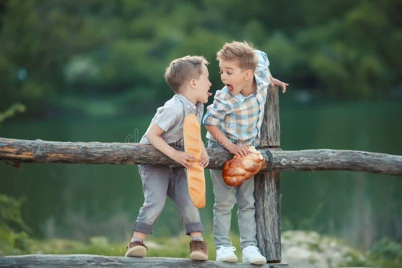 寻找某事的篱芭的两个男孩 免版税库存图片