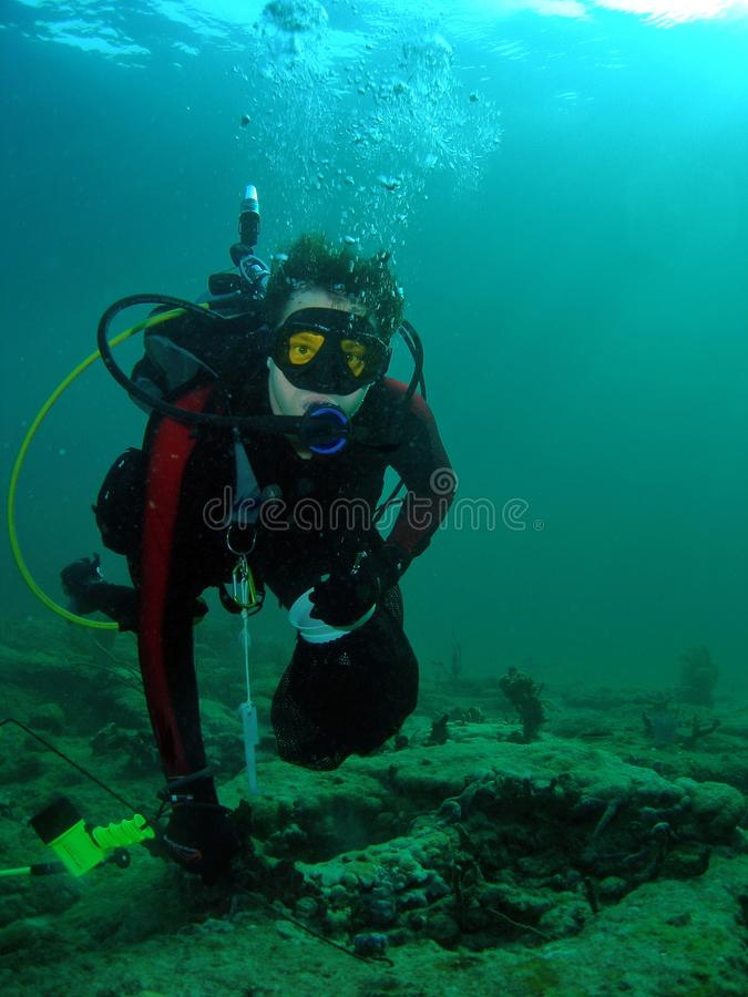 寻找龙虾的潜水员 免版税库存照片