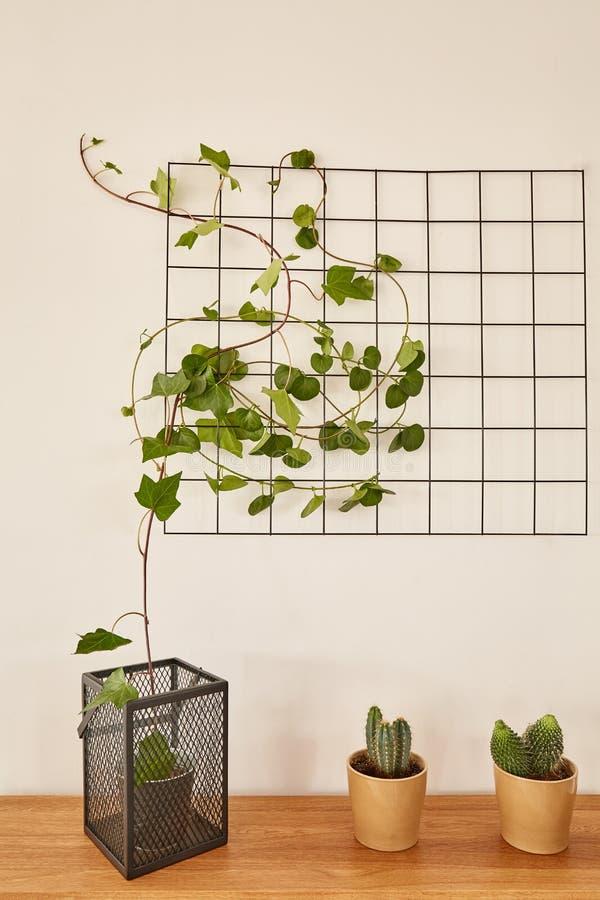 导线与盆的植物的栅格盘区 免版税库存图片