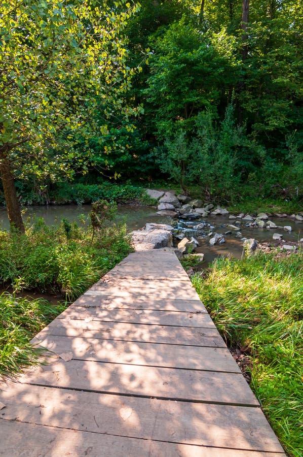 导致九英里奔跑的一个木走道在弗利克公园在匹兹堡,宾夕法尼亚,美国 库存图片
