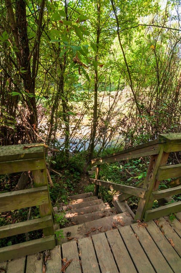 导致从走道的木步九英里奔跑在弗利克公园在匹兹堡,宾夕法尼亚,美国 免版税库存图片