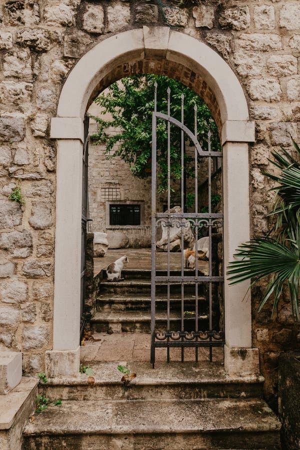 导致庭院的一个老加工的门 库存图片