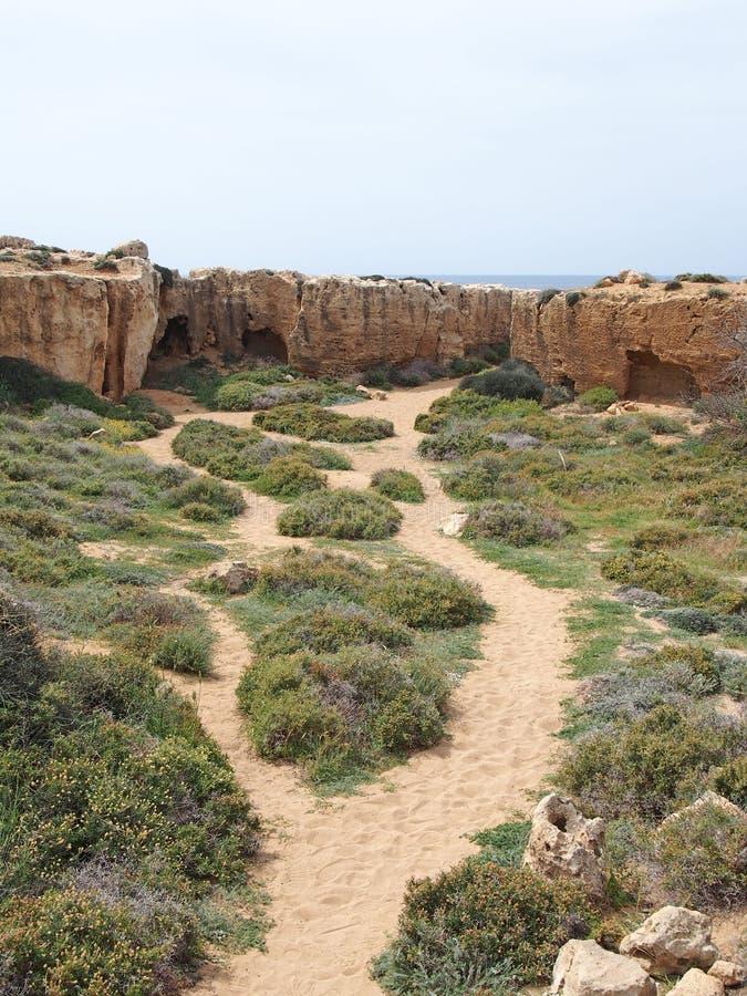 导致洞和坟墓的道路被雕刻入岩石面孔靠近海在国王区域的坟茔在paphos塞浦路斯的 库存图片