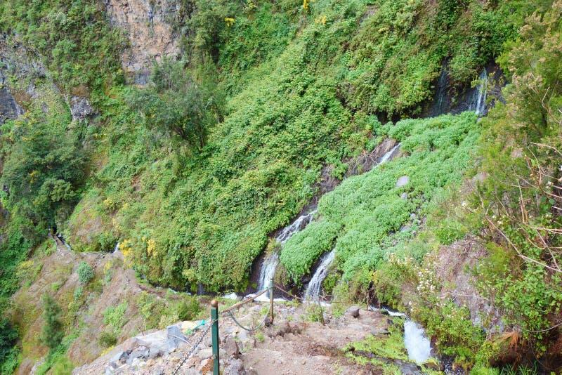 导致瀑布的供徒步旅行的小道掩藏深深在Los蒂洛斯岛自然保护山和月桂树森林告诉了Naciente Marc 库存图片