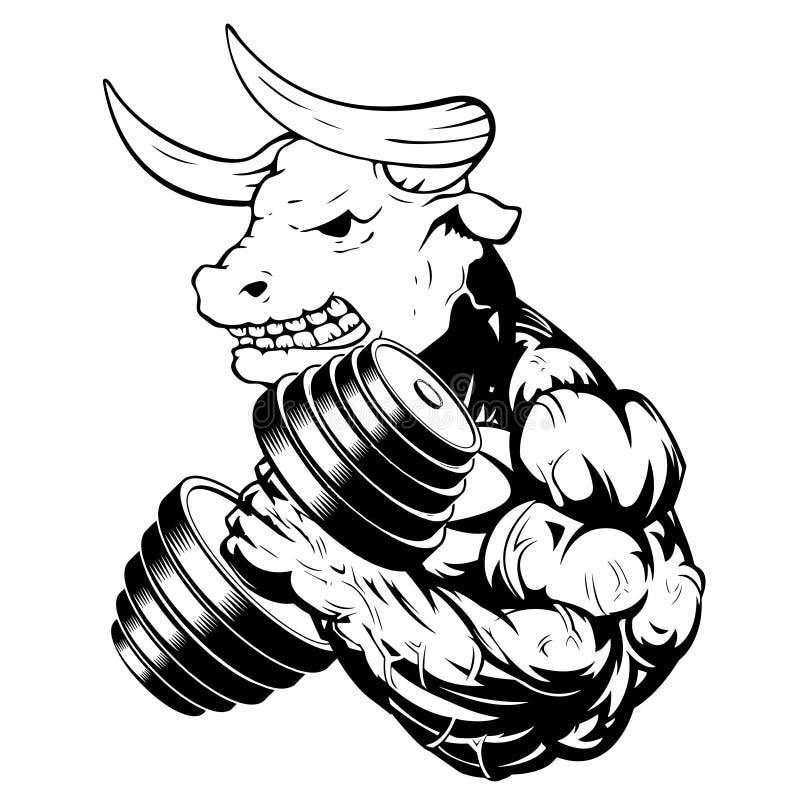 导航一头强的健康公牛的例证与大二头肌的 向量例证