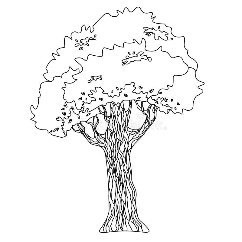 导航一棵树的图画与冠和树干的图片