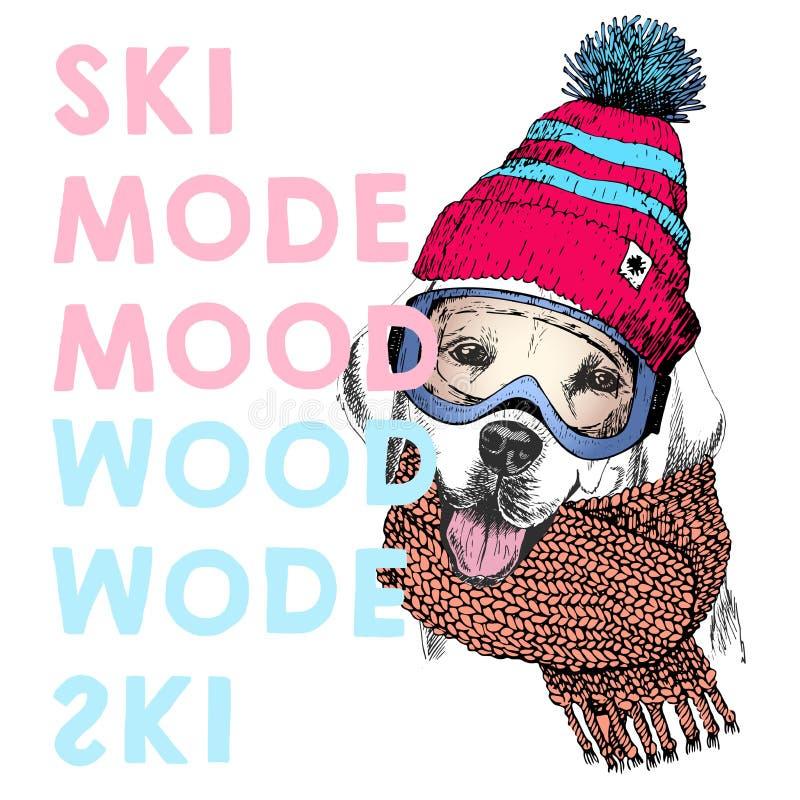 导航与关闭的海报拉布拉多猎犬狗画象  滑雪方式心情 小狗童帽、围巾和雪风镜 皇族释放例证