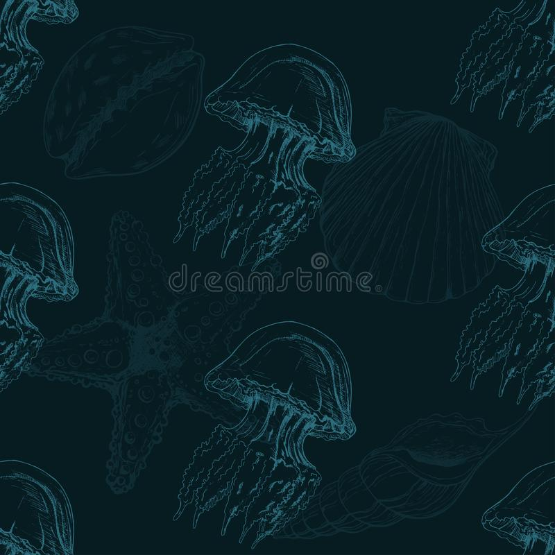 导航与手拉的海壳、海星和水母剪影的无缝的样式 与海壳的背景 向量例证
