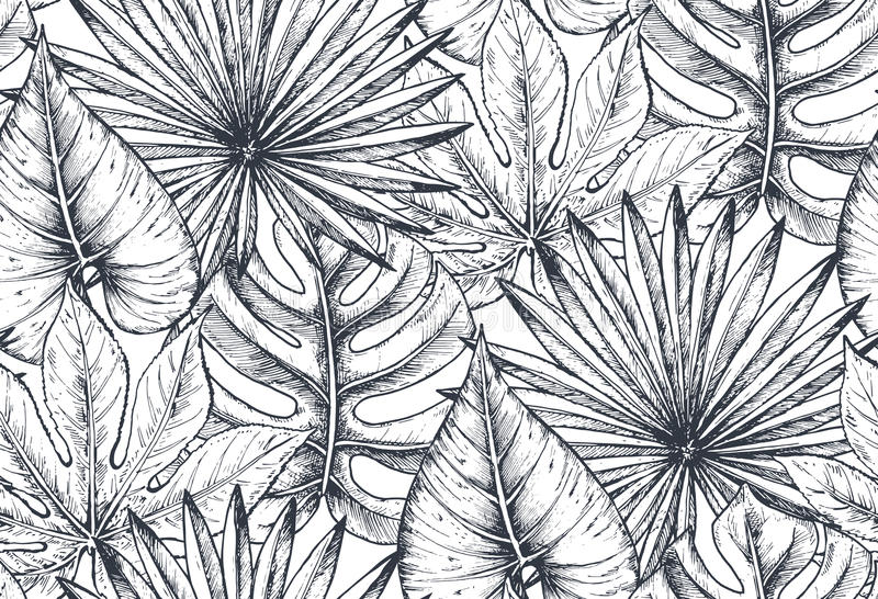 导航与手拉的热带植物的构成的无缝的样式 库存例证