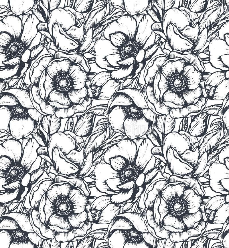导航与手拉的银莲花属花的黑白无缝的样式 皇族释放例证