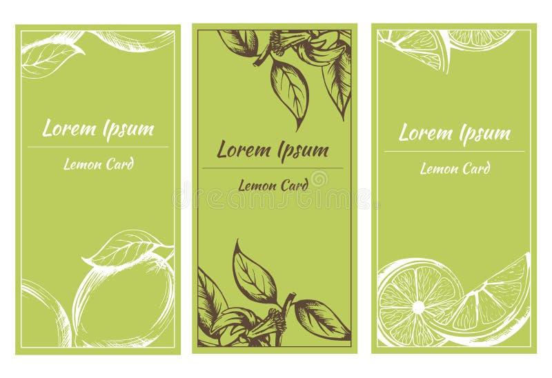 导航与柠檬和花剪影的贺卡  免版税库存照片