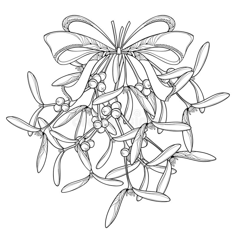 导航与概述槲寄生的束和与在白色背景隔绝的丝带的华丽弓 叶子、槲寄生莓果和分支  向量例证