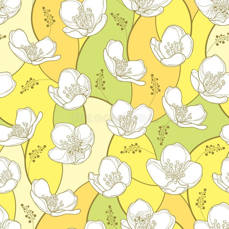 导航与概述白色茉莉花花的无缝的样式在淡色背景 与茉莉花的高雅花卉背景 皇族释放例证