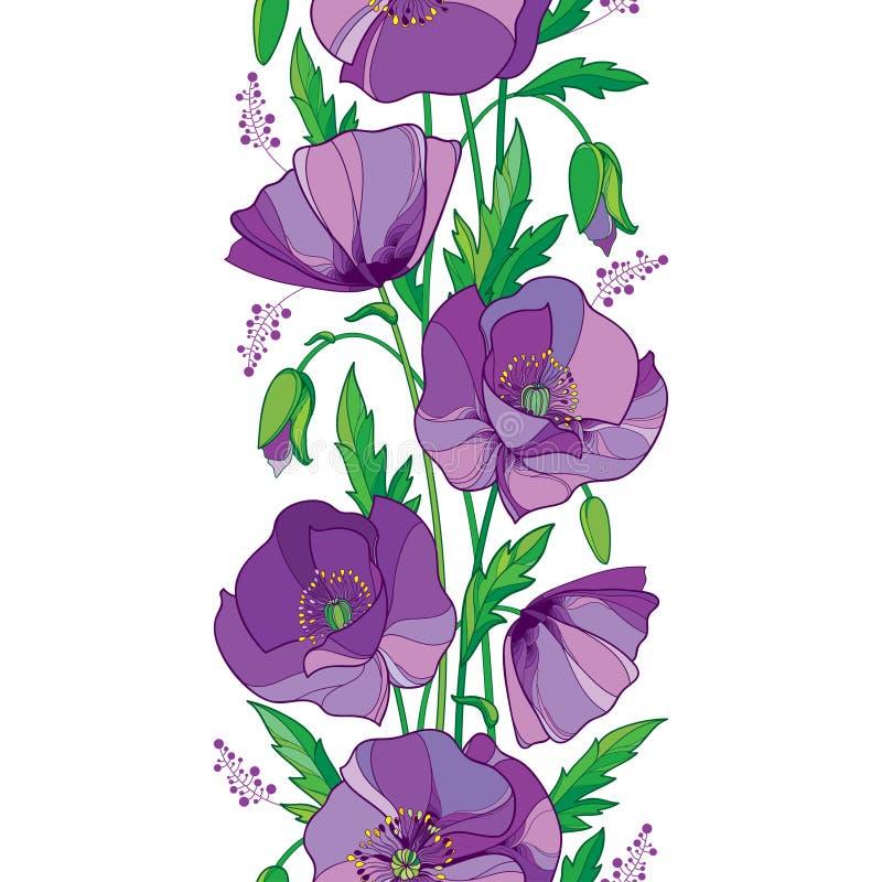 导航与概述紫色鸦片花、芽和绿色叶子的高雅无缝的样式在白色背景 花卉边界 向量例证