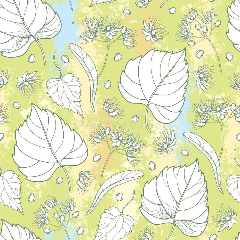 导航与概述菩提树或椴树属或者美国鹅掌楸花束的无缝的样式、苞、果子和华丽叶子 库存例证