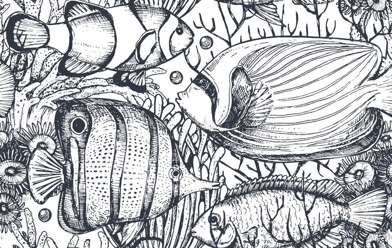 导航与热带鱼,海藻,珊瑚的单色无缝的海样式 向量例证