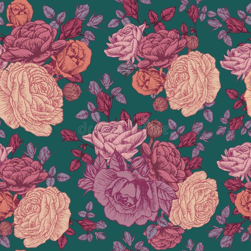 导航与玫瑰和波斯毛茛的花卉无缝的样式 向量例证