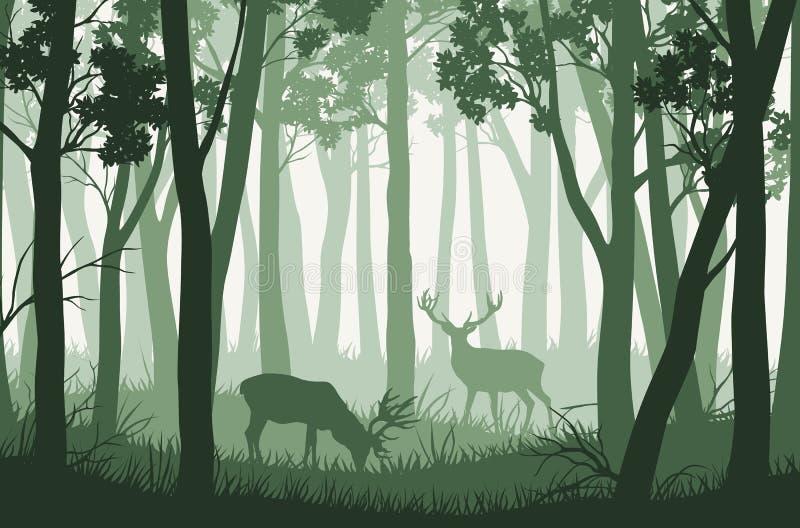 导航与绿色树的风景在森林和两头鹿里 向量例证