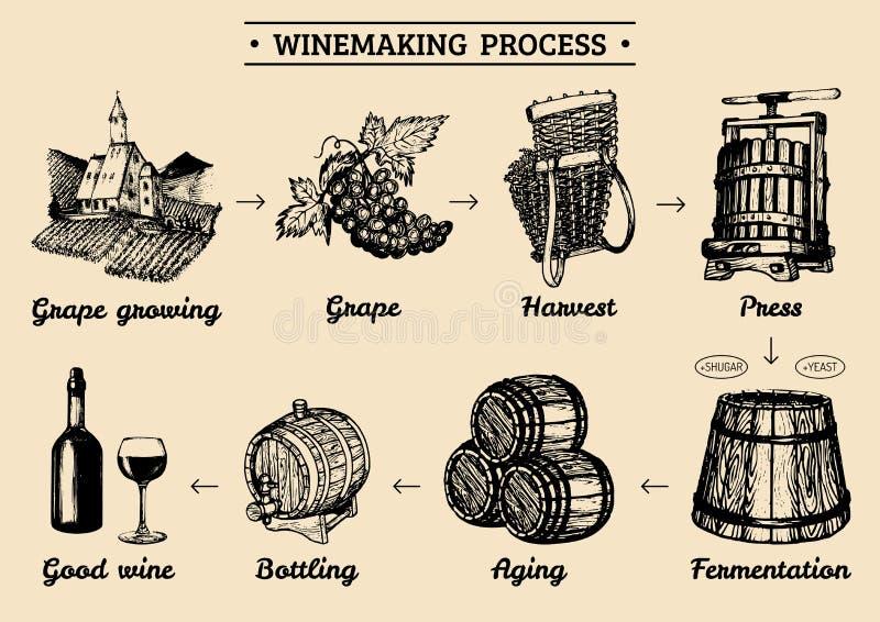 导航与酿酒厂过程的例证的葡萄infographics 藤做操作元素速写的图画  向量例证