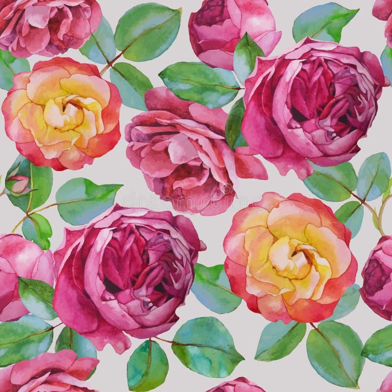导航与水彩玫瑰的花卉无缝的样式在米黄背景 向量例证