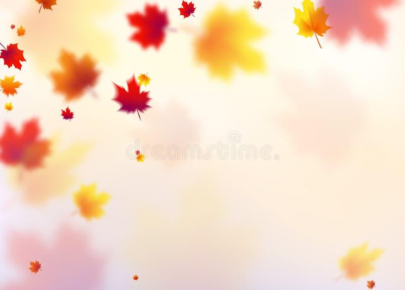 导航例证秋天飞行红色,橙色,棕色,黄色槭树叶子 皇族释放例证