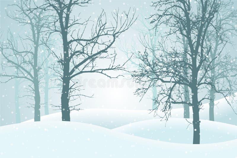 导航冬天森林的例证有雪和薄雾的, suitabl 向量例证