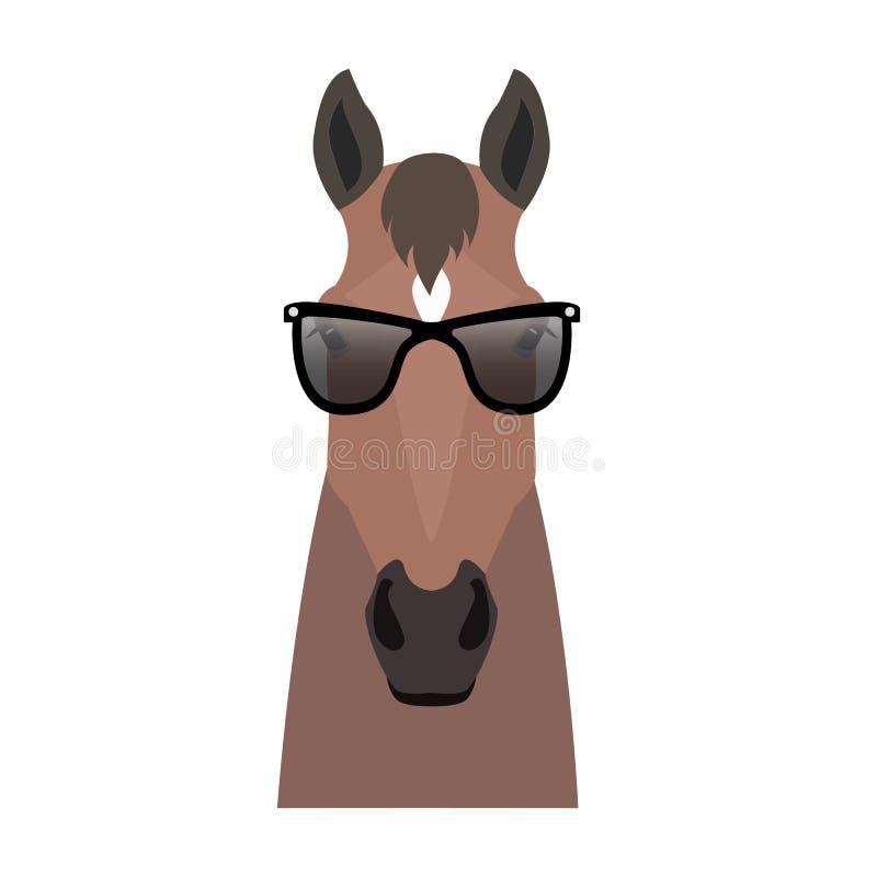 导航在太阳镜的海湾棕色颜色平的样式马头 皇族释放例证