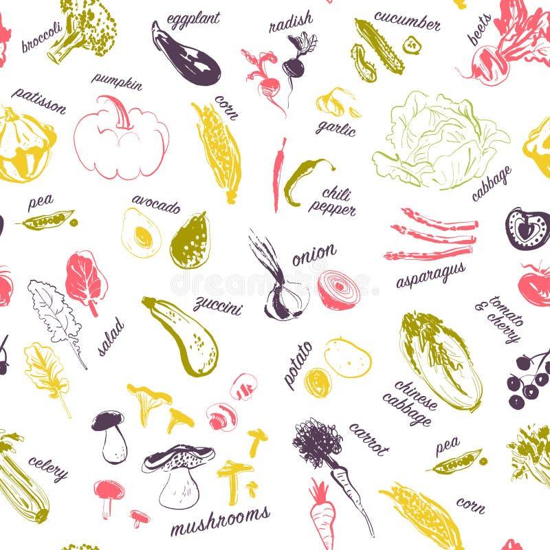 导航在白色背景与手拉的剪影未加工的蔬菜的无缝的样式和标题隔绝的 库存例证