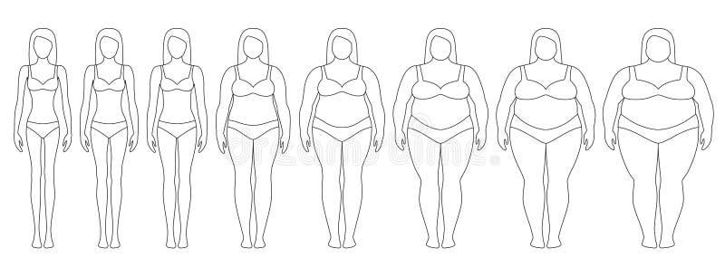 导航妇女等高的例证与另外重量的从厌食到极端肥胖 向量例证